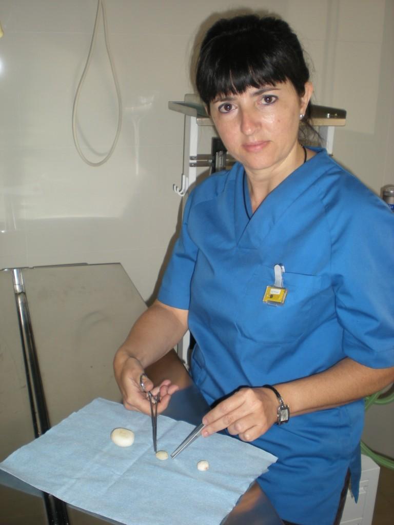 Clínica Veterinaría El Valle Encantado