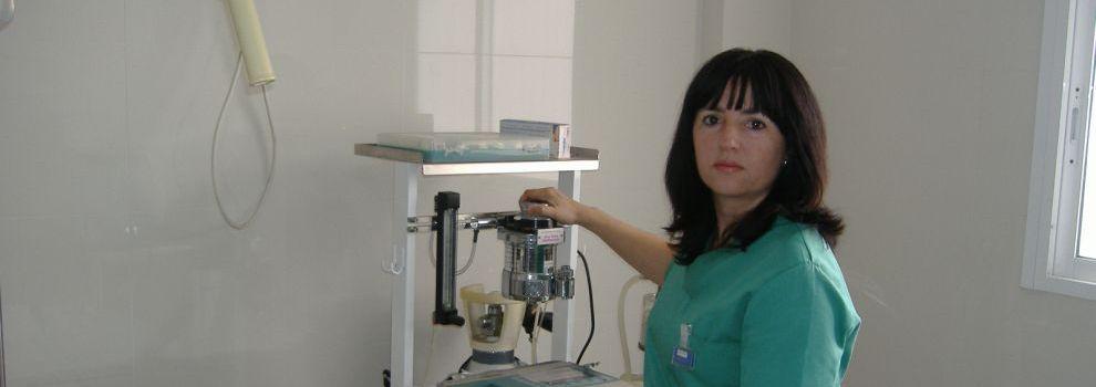 Cirugías animales, veterinaria en Cádiz