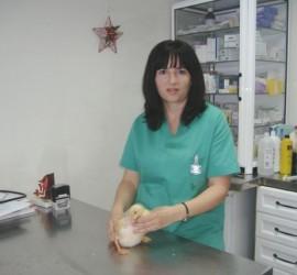 vacunaciones animales, veterinaria en cadiz